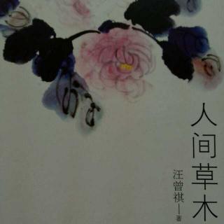 人间草木 汪曾祺 -在线收听 mp3下载 荔枝