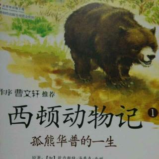 西顿动物记全10册