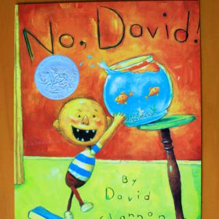 大卫不可以no david