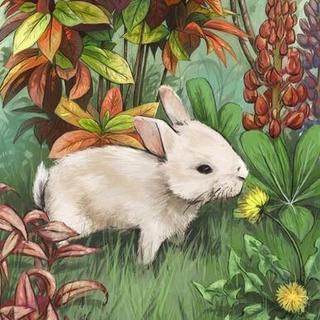【小白兔和灰兔子】在线收听