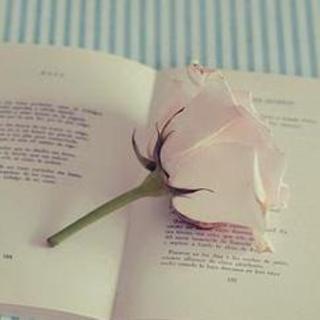 【读书三境界】在线收听_读给女人听_荔枝FM
