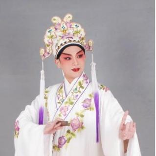 戏曲咚咚锵—伍家辉访谈之粤剧《帝女花》图片