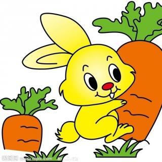 兔子妈妈卡通画