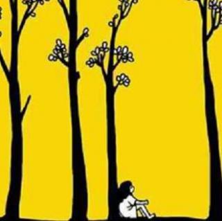 布衣之声--【四棵细瘦的树:嘉宾主播-易良慧】
