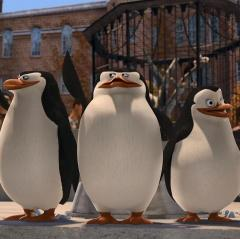 Just smile and wave,Boys,smile and wave