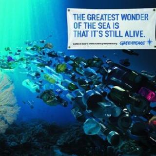 【行者无疆】其实我们都是鱼
