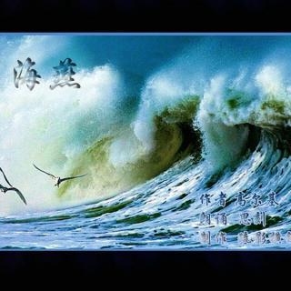 诗歌v诗歌-海燕好藏獒图片