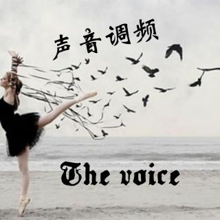 The Voice Radio声音调频片花
