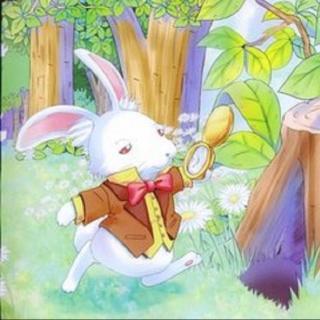 爱丽丝漫游奇境记①掉进兔子洞
