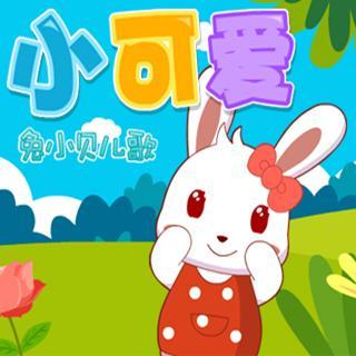 兔小贝儿歌273小可爱