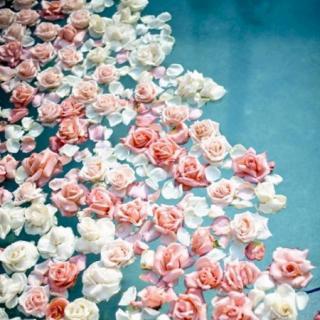 花已开 你一定会来