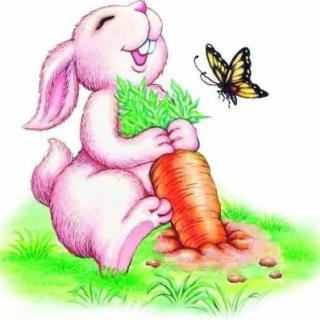 勤劳的小初中好哪个白兔兴城图片