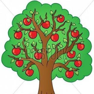 淘淘和苹果树