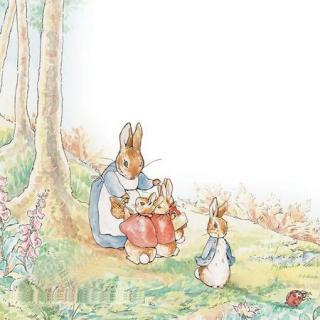 《彼得兔的故事》主播:姗姗姐姐
