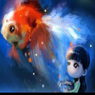 微信头像鱼动物图片