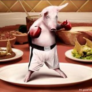 为什么同样禁食猪肉的犹太教,却对