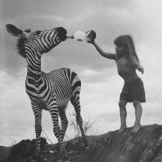 tippi | 动物世界复杂的很