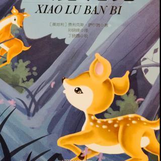 二年级小鹿斑比手抄报-在线收听 张小乖的故事书 荔枝