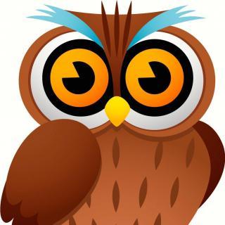 乐蔓:大眼睛猫头鹰