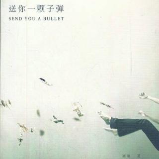 【一个人要像一支队伍】 刘瑜 《送你一颗子弹》