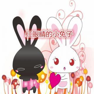 红眼睛的小兔子-米米姐姐