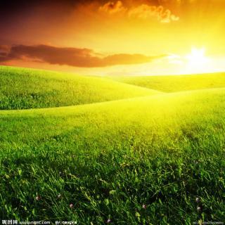 微信风景阳光图片素材