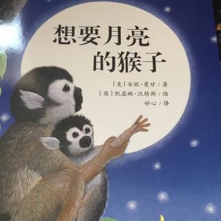10 想要月亮的猴子