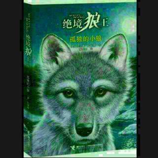 读书16_绝境狼王系列_孤独的小狼20151120