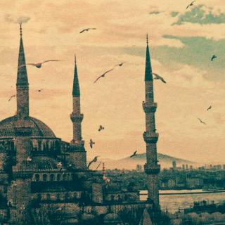 《大象吹口琴,伊斯坦布尔的气味》文 周云蓬