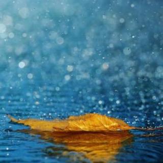 【测试】听下雨的声音 会不会很冷?