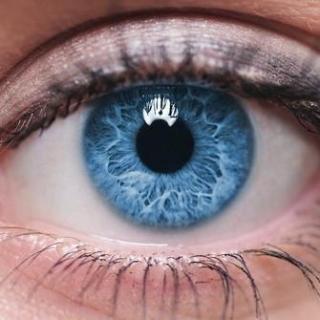 瞳孔--达