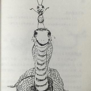 小蚂蚁历险记~6.大战眼睛蛇(2)