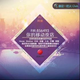 极品车载丶档次电子  电台开启了分类专辑方便大家选歌(DJayi Remix