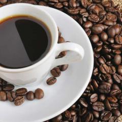 咖啡树的生长