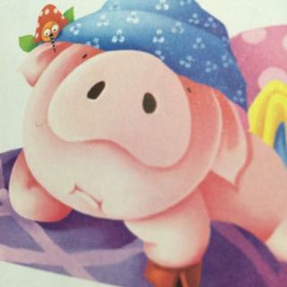 可爱小猪萌萌的照片