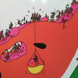 蚂蚁和西瓜图片
