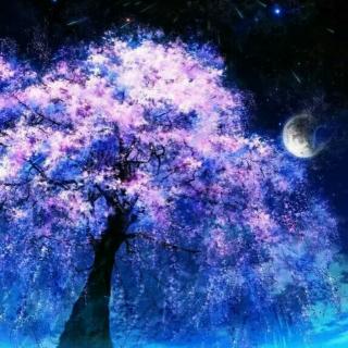 星空樱花图片手绘