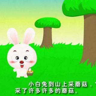 【 故事  懂礼貌的小白兔>>】在线收听_小太阳广播了