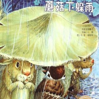 介绍:                              下雨了,森林里的小动物