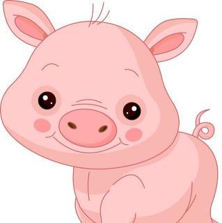 微信情侣头像猪