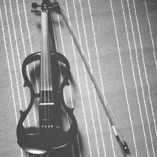 第十四期:小提琴《鸿雁》
