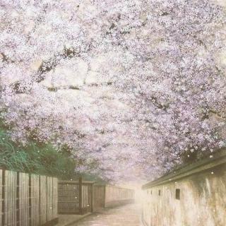 清明樱花祭简谱_【clannad】清明樱花祭