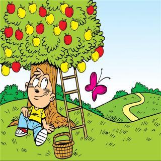 229淘淘和苹果树