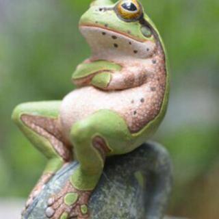 骄傲的青蛙 -在线收听 冰上紫烟 荔枝FM