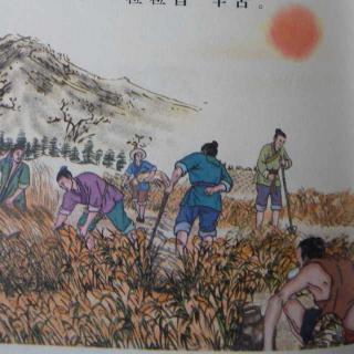 悯农(其二) 〔唐〕李绅