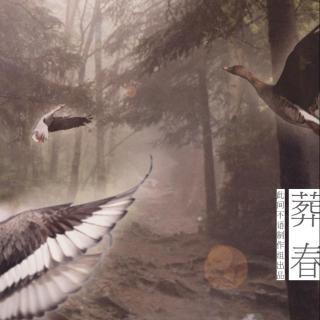 西瓜jun,assen捷 - 葬春【祭南康白起】