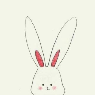 大白兔和小白兔