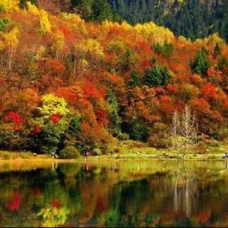 秋天的多瑙河