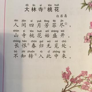 大林寺桃花拼音版古诗图片