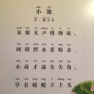 【为你读诗:baby版】小池·宋 杨万里图片